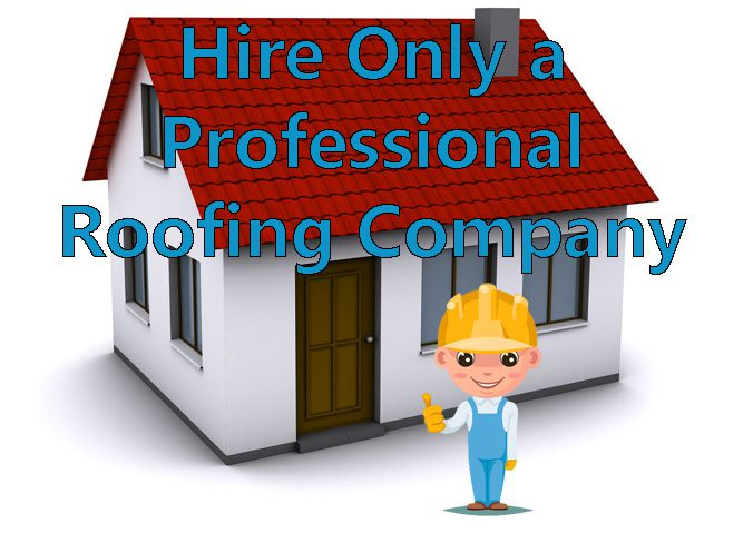 let us be your professional roofing company